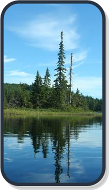 Photo of BC lake with crystal blue sky and reflection of forest in water.